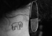 PIN earring 71 euro